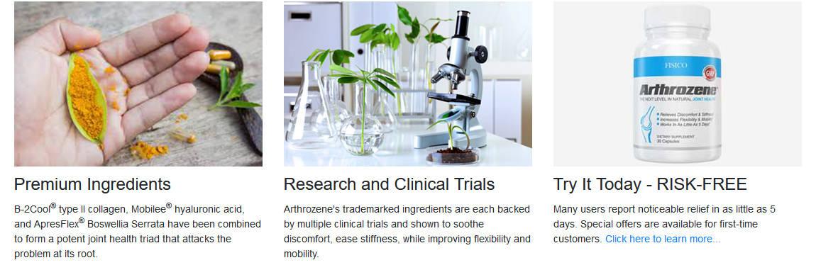 Arthrozene Ingredients